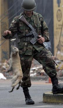 Un soldado alimenta un perro. | Reuters