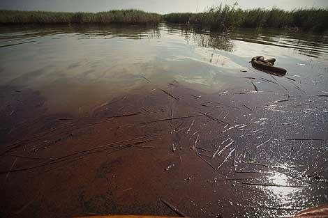 Vista de la mancha de petróleo desde las barreras que deben proteger los pantanos. | Efe