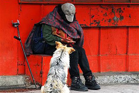 'Cachupín', el perro del Bicentenario de Chile. | J.B.