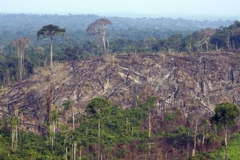 La imagen muestra la deforestación de una zona de la Amazonia en Brasil. I AFP