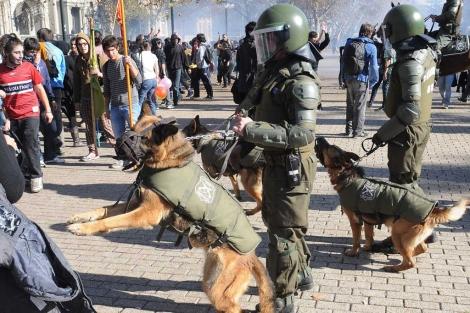 La Policía dispersa a los manifestantes con perros.   AFP