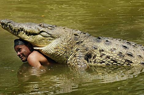 Gilberto Shedden, más conocido como Chito, con su amigo el cocodrilo Pocho.   Efe
