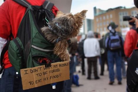 Movilización de 'Occupy Denver' en Colorado.| Reuters.
