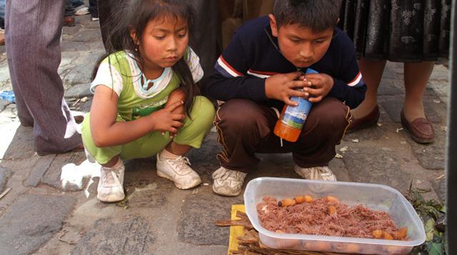 Dos niños miran absortos unos gusanos de chonta en un caja. | J. Barreno