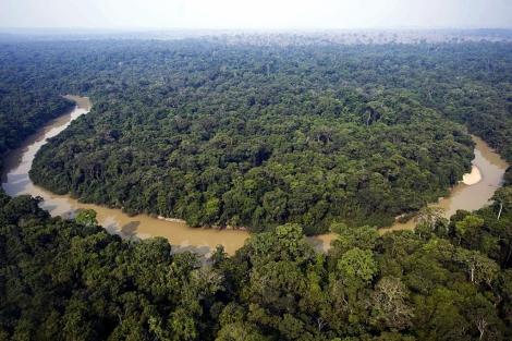 El río Amazonas. | Afp