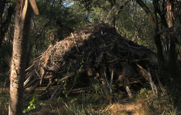 Casa abandonada por los ayoreros. | Survival