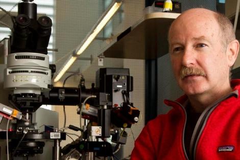 El español, Rafael Yuste, en su laboratorio en Columbia. | Miguel Rajmil