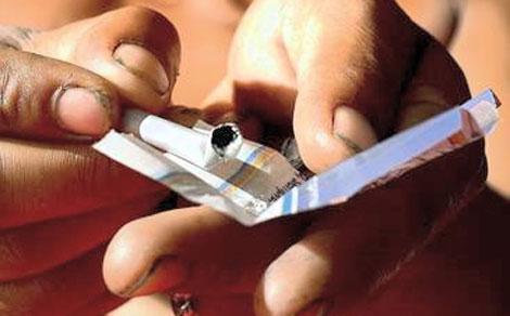 Preparación de un cigarro de PBC.| Fundación Manantiales