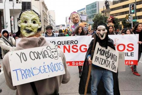 Manifestación en Chile en contra de la actividad de Monsanto. | Reuters
