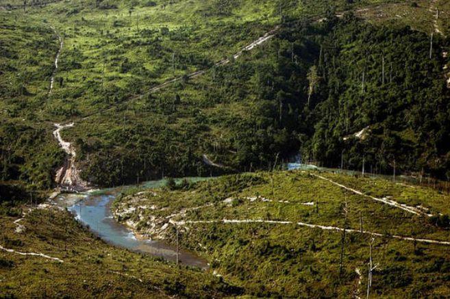 Perú es uno de los países que tiene una mayor extensión de selva...