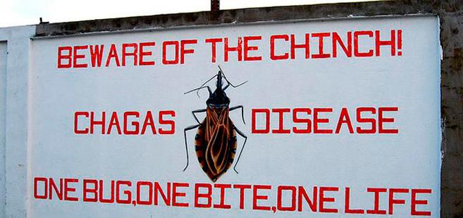 Un cartel en Bolivia alerta del peligro que supone la vinchuca.