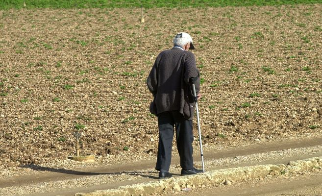Un anciano pasea de espaldas por el campo
