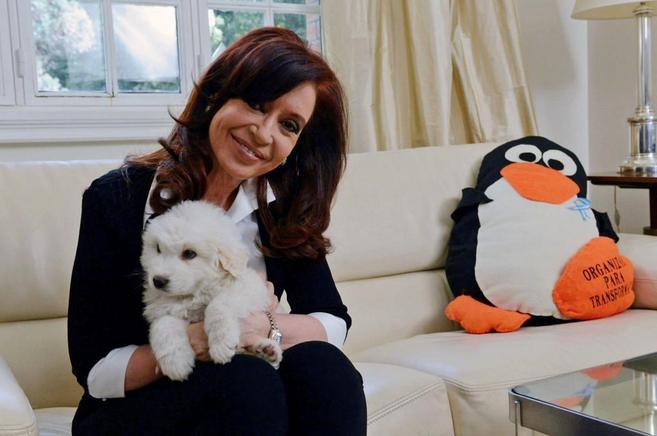 La presidenta argentina, Cristina Fernández, en su reaparición tras...