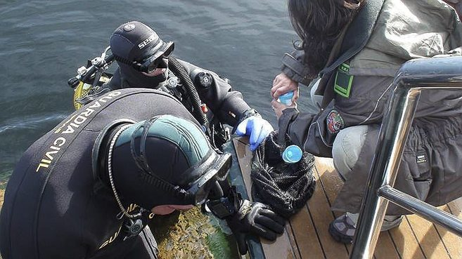 Dos buceadores de la Guardia Civil extraen muestras de contaminación...