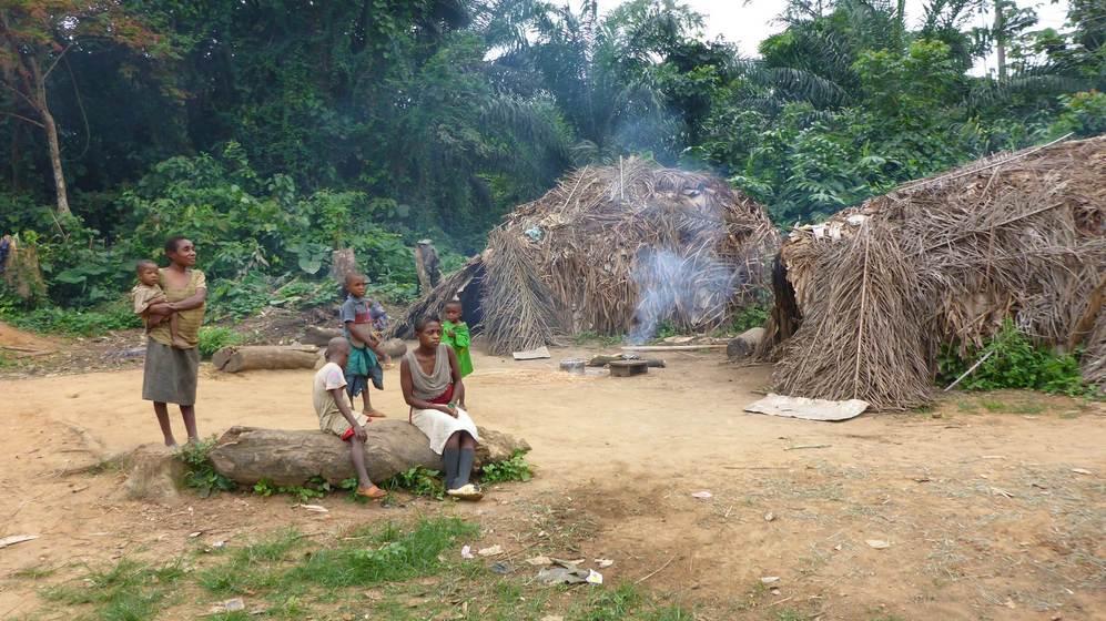 Poblado baka, cerca de la Reserva de la Biosfera del Dja.