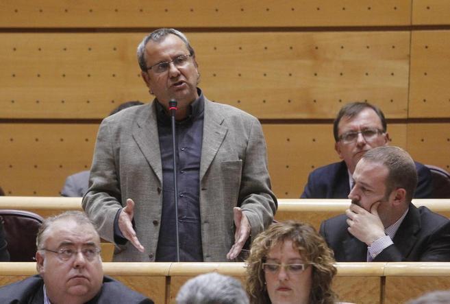 El senador de Bildu Iñaki Goioaga, en pie, durante una intervención...