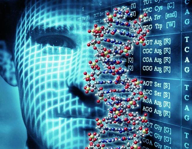 Recreación artística del genoma humano. |