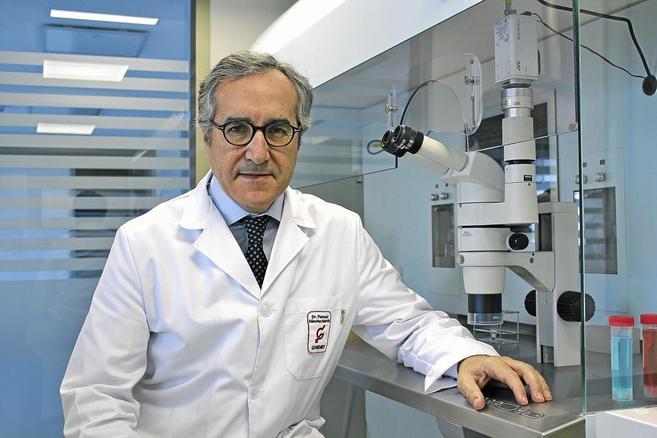 El doctor Pascual Sánchez, director médico de las clínicas Ginemed