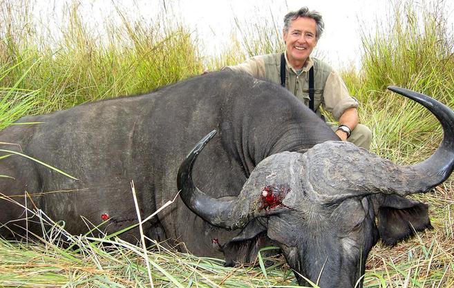 El ex presidente de Caja Madrid de cacería, cazando un búfalo.