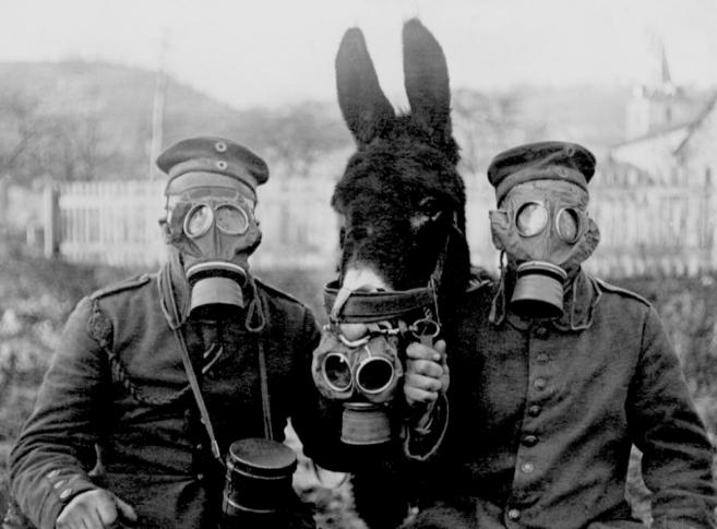 Mula y dos soldados prueban las primeras máscaras que se usaron en el...