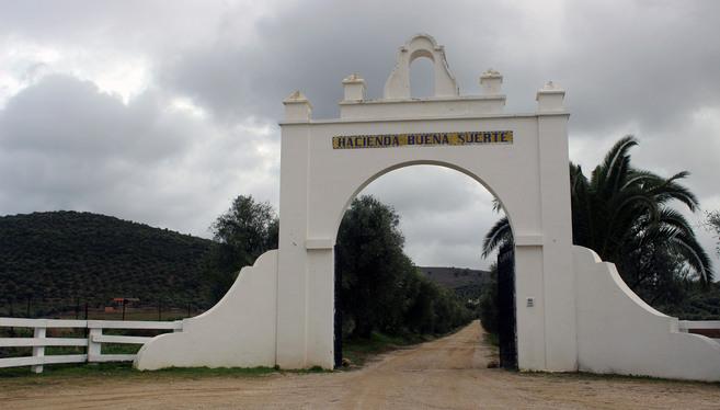 Esta finca de la localidad gaditana de Villamartín pudo convertirse...