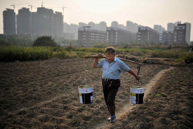 Un hombre trabajando en un campo de cultivo en Anhui, China