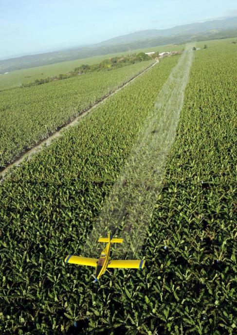 Un avión fumiga con plaguicidas una plantación del sur de Filipinas.