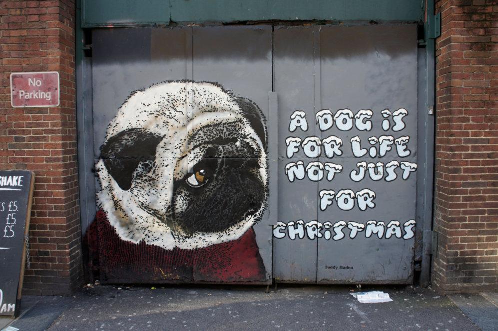 Los perros son la marca de la casa de Teddy Baden. El diseño de la...