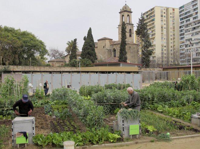 El huerto urbano de Can Cadenes, en Barcelona.