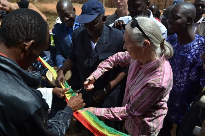 Jane Goodall inaugura el centro español 'Fouta Jallon'...