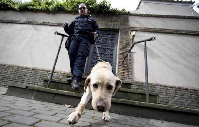 Un perro policía rastrea una de las calles de Roma ante la llegada de...