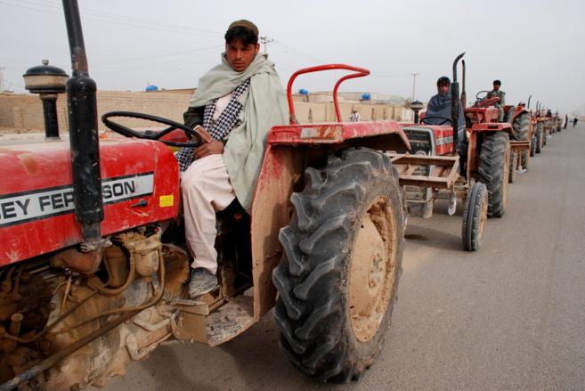 Fila de tractores preparados en Laskar Gah, la capital de Helmand,...
