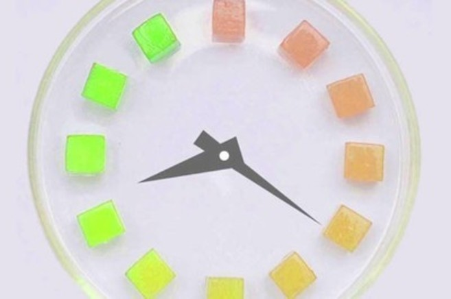 Escala de colores que permite saber si el producto puede comerse o no.