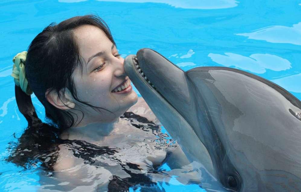 Un delfín entrenado interactúa con una chica durante una sesión de...