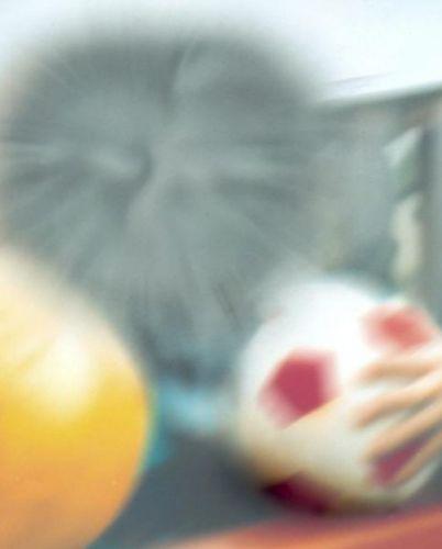 Así ve un paciente con degeneración macular.