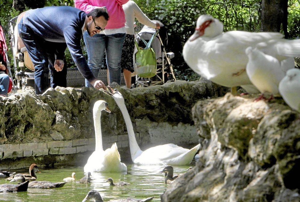 El Parque Que Puede Ser Y No Es Sevilla El Mundo
