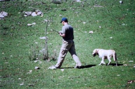 Un capataz de la brigada canina busca veneno con uno de sus perros