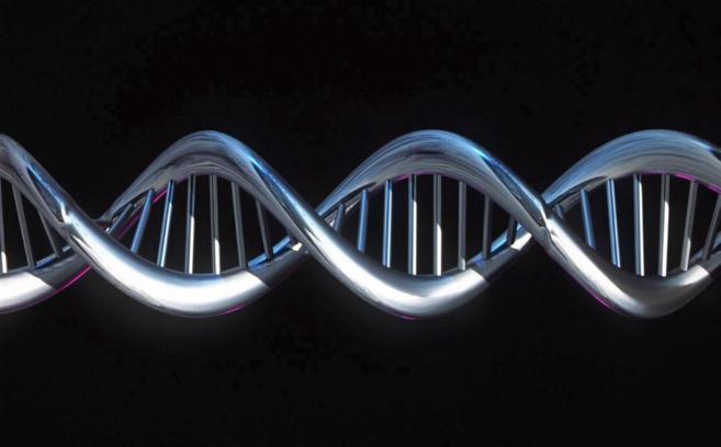 Imagen computerizada de una cadena de ADN