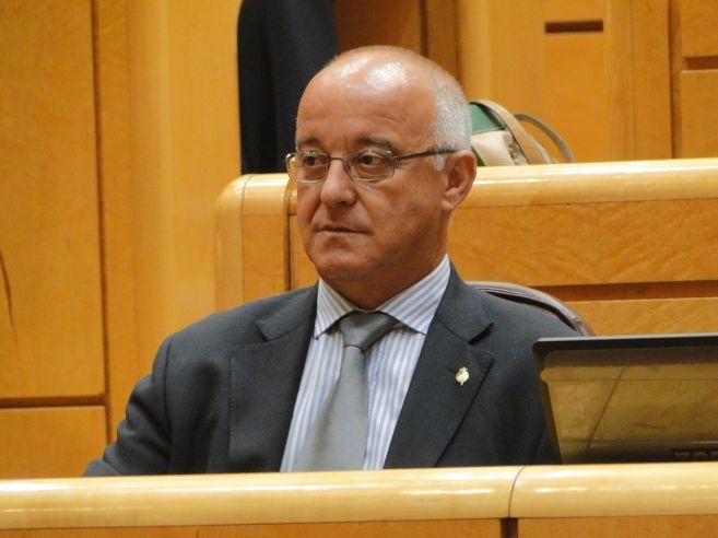 El senador del PP por las Islas Baleares José Sala Torres.