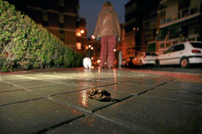 Una mujer pasea a su perro y no recoge los excrementos que ha dejado.