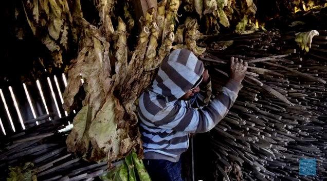 """Fotograma del vídeo """"Fabricado en EEUU: trabajo infantil y..."""