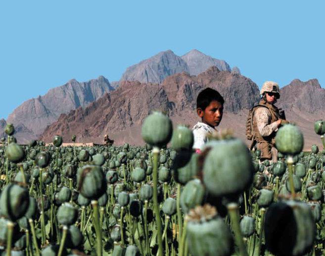 Un niño y un soldado en un campo de opio es la imagen elegida para...