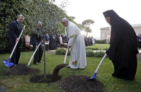 Juntos han plantado un olivo al final de la oración.