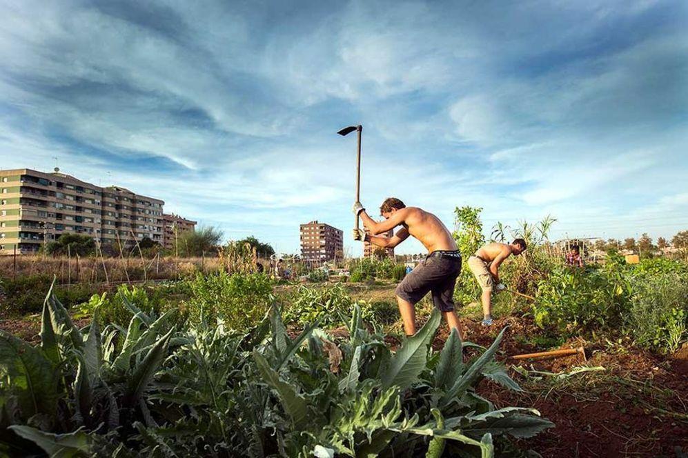 Fotografía de un huerto urbano incluida en el libro 'Veus per...
