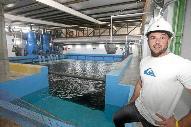 El biólogo conservador del acuario de Sevilla, Andrés Loza, ante el...