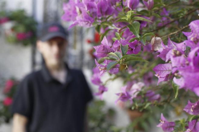 Un hombre aparece borroso oculto tras unas flores