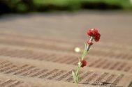 Un clavel rojo en el listado de víctimas de la Guerra Civil.
