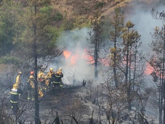 Bomberos apagando el fuego en el Chaparral.