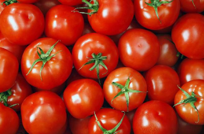 En el Mercado los agricultores madrileños dan a conocer sus productos...