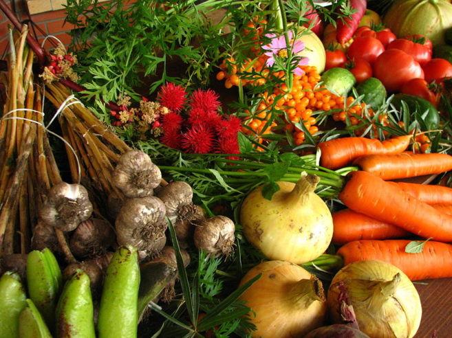 Verduras de cultivo ecológico